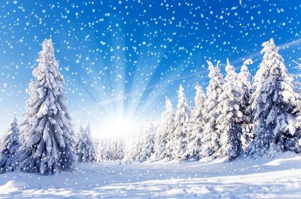 佛教对往生人的祝福❤佛教简短一句话
