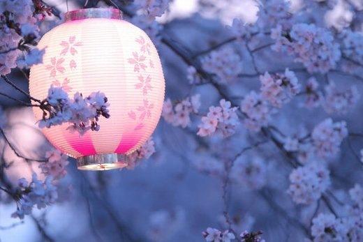 静心修心的佛语,佛语流行句子