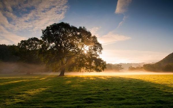 人生最大的幸福感悟|幸福一句话句子
