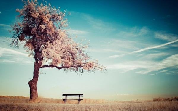 幸福不是故事不幸才是_难受语录大全