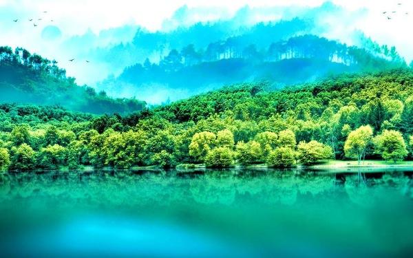 早安的一句阳光的短句_早安超火句子