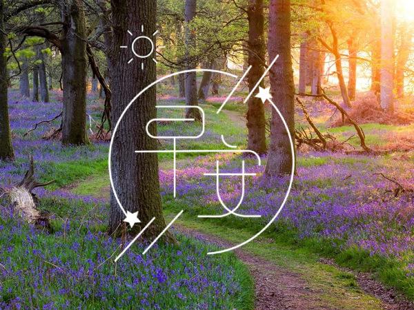 十二月你好的励志早安祝福语|励志句子大全